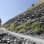 EcomaratonaDSC_8544